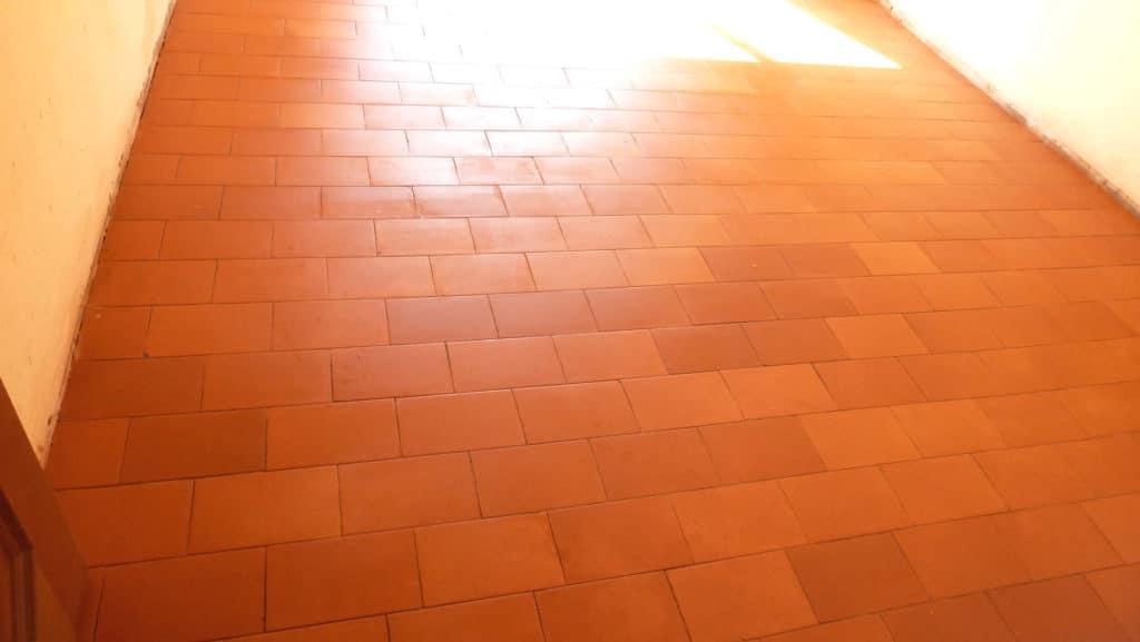Teppichkleber von Cotto entfernt