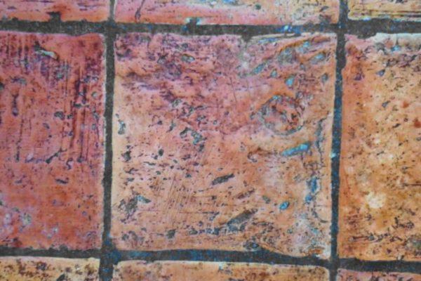 Schwarze Flecken auf Terracotta