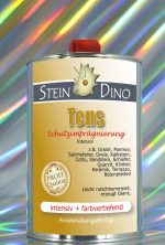 SteinDino Tens
