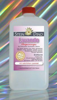 SteinDino Lavando